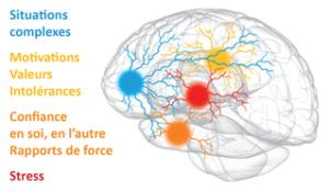 L'Approche Neuro-Cognitive