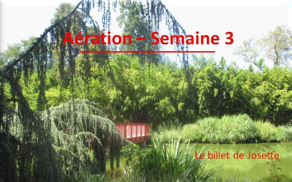 Billet de Josette | Aération Semaine 3
