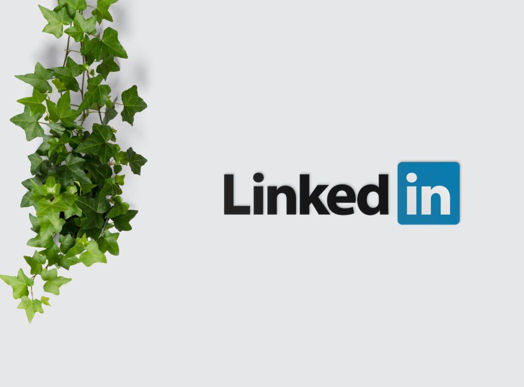 Linkedin : Optimiser son profil, sa page entreprise et prospecter